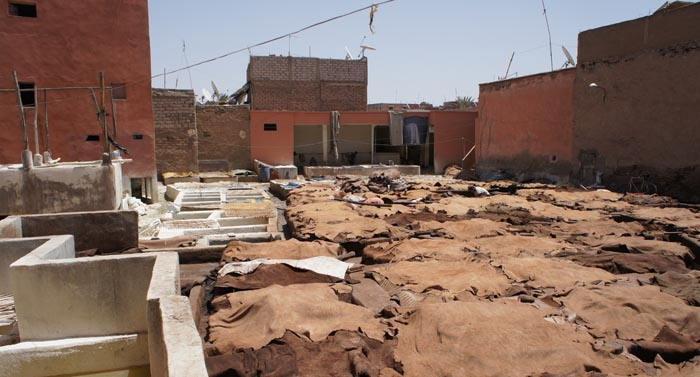 Curtidurias de Marrakech, tanneries